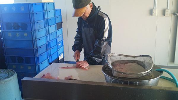 霞ヶ浦 山野水産の活鯉