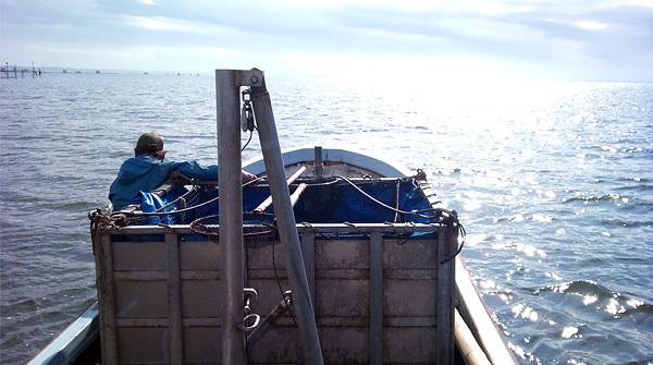 霞ヶ浦 山野水産の漁船